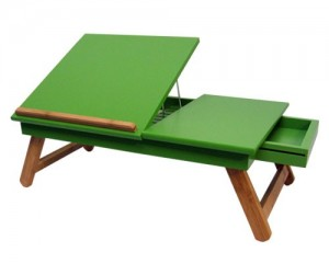 lap-top-table-fern-open