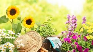 Love-for-Flowers-Gardening-Wallpaper