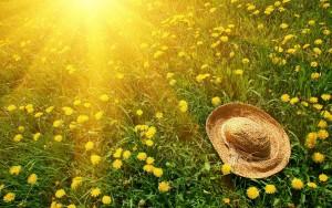 summer-sun-hat