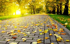 Autumn-Wallpaper-Full-HD-Free-Download-Desktop-Wallpaperxyz-dot-Com-36