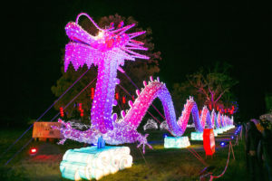 magicallantern_dragon_875