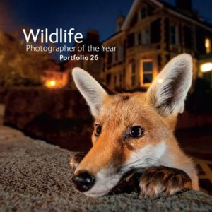 xwildlife-photographer-of-the-year-11.jpg.pagespeed.ic.PBwn5erY1p